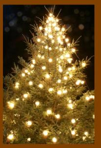 Holidays and Electrical Safety