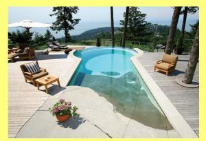 Pool Design Trends